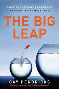 The Big Leap: Conquer Your Hidden Fear and Take Life to the Next Level by Gay Hendricks